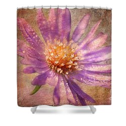 Textured Aster Shower Curtain by Lois Bryan