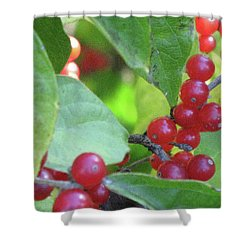 Textured Berries Shower Curtain