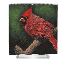 Textured Cardinal Shower Curtain