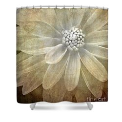 Textured Dahlia Shower Curtain