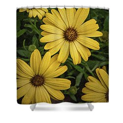 Textured Floral Shower Curtain
