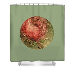 Shower Curtain featuring the painting Textured Rose Art by Mary Wolf