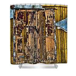 Textured Wall Shower Curtain by Ray Laskowitz - Printscapes
