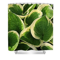 Textures In Leaves Shower Curtain