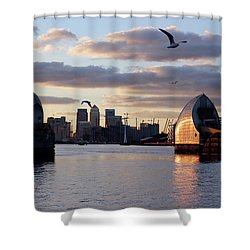 Thames Barrier And Seagulls Shower Curtain