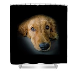 Thanks For Picking Me Shower Curtain by Karen Wiles