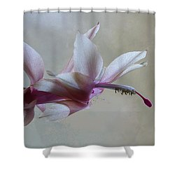 Thanksgiving Cactus Shower Curtain