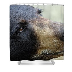 That Face Shower Curtain by Karol Livote