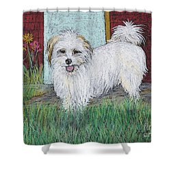 That Little White Dog Shower Curtain by Reb Frost