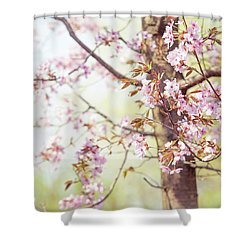 Shower Curtain featuring the photograph That Tender Joyful Spring by Jenny Rainbow