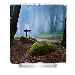 That Way Shower Curtain by Jorge Maia