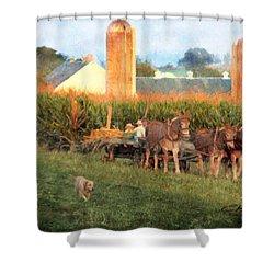 The Abundant Harvest Shower Curtain