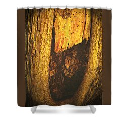 The African Queen Shower Curtain by Lenore Senior