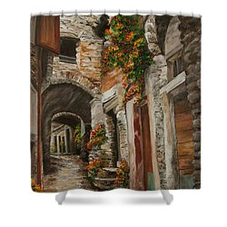 The Alleyway Shower Curtain by Charlotte Blanchard