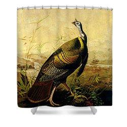 The American Wild Turkey Cock Shower Curtain by John James Audubon