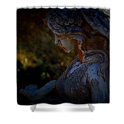 The Angel Of The Grove Shower Curtain