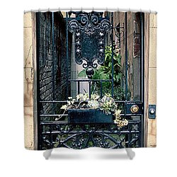 The Antique South Shower Curtain