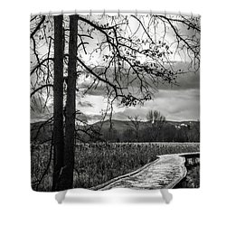 Shower Curtain featuring the photograph The Appalachian Trail by Eduard Moldoveanu