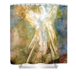 Shower Curtain featuring the painting The Appearance by Marina Petro