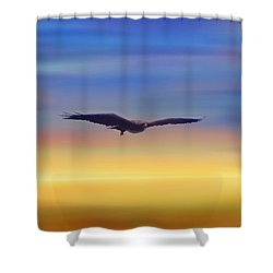 The Art Of Flying Shower Curtain