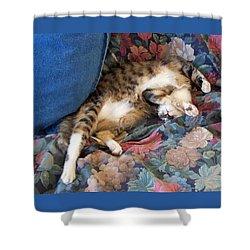 The Art Of Sleeping Shower Curtain