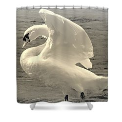 The Art Of The Swan  Shower Curtain