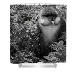 The Artisan Shower Curtain