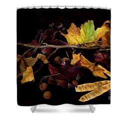 The Autumn Branch Shower Curtain