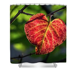 Shower Curtain featuring the photograph The Autumn Heart by Bill Pevlor