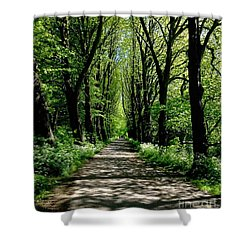 The Avenue Of Limes At Mill Park 3 Shower Curtain