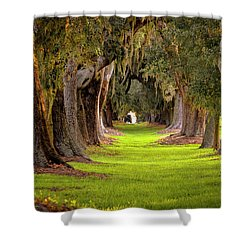 Shower Curtain featuring the photograph The Avenue Of Oaks 4 St Simons Island Ga Art by Reid Callaway