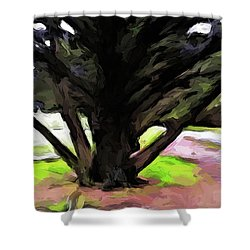 The Avenue Of Trees 1 Shower Curtain