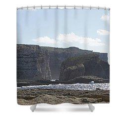 Fungus Rock Shower Curtain
