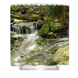 The Babbling Brook Shower Curtain