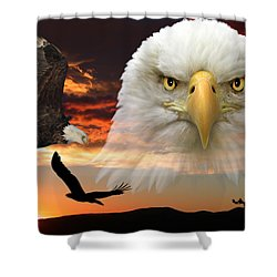 Shower Curtain featuring the photograph The Bald Eagle by Shane Bechler