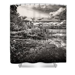 The Basin And Snails Shower Curtain by Bob Orsillo
