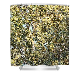 The Bathers Shower Curtain by Childe Hassam