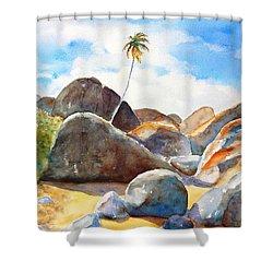 The Baths Palm Tree Shower Curtain