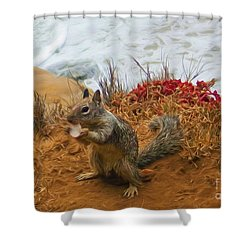 The Beach Bum Shower Curtain