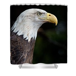The Beak Pointeth Shower Curtain