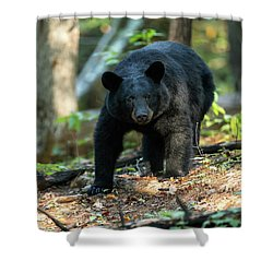 Shower Curtain featuring the photograph The Bear by Everet Regal