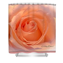 The  Beauty Of A Rose  Copyright Mary Lee Parker 17,  Shower Curtain by MaryLee Parker