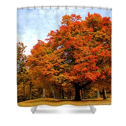 Shower Curtain featuring the photograph The Beauty Of Autumn  by Michael Rucker