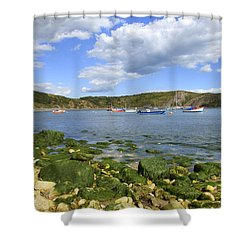Shower Curtain featuring the photograph The Beauty Of Lulworth Cove by Ian Middleton