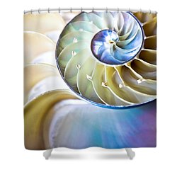 The Beauty Of Nautilus Shower Curtain