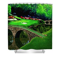 The Beauty Of The Masters Cropped Version Shower Curtain