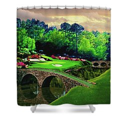 The Beauty Of The Masters Shower Curtain