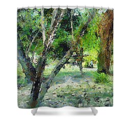 The Beauty Of Trees Shower Curtain
