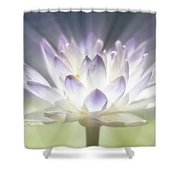 The Beauty Within Shower Curtain