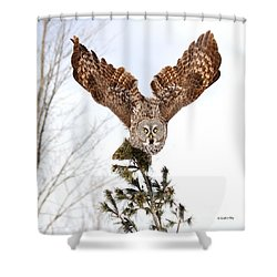 The Becoming Of The Queen Shower Curtain